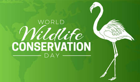 World Wildlife Conservation Day  Background Illustration with Bird
