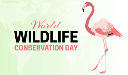 Colorful World Wildlife Conservation Day  Background Illustration with Flamingo