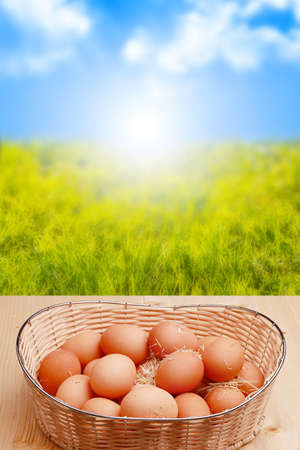 fresh eggs and sunrise in the background