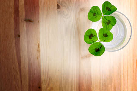 three leaf clover: Three leaf clover on a wood background Stock Photo