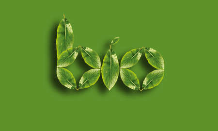 thrifty: Bio word made up of green leaves Stock Photo