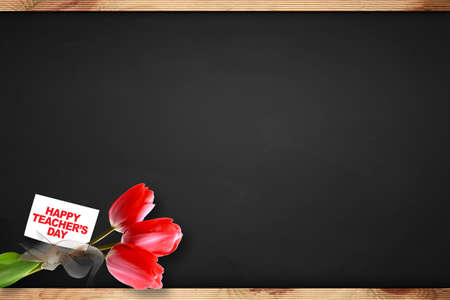 Tulip on blackboard and teachers day card