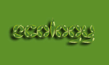 ecology word made up of green leaves Stock Photo