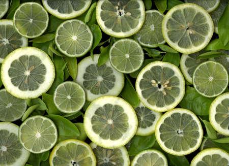 Colorful fresh organic slices of lemons and limes