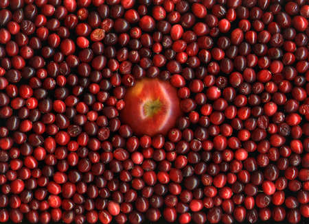 Single fresh organic red apple with vibrant red cranberries
