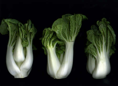 Organic green bok choy isolated on black background Stock Photo