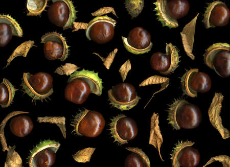 Ripe chestnuts isolated on black background