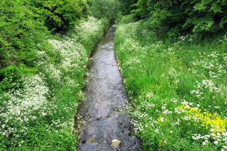 Small creek in the springtime Stock Photo
