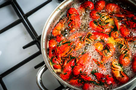 crayfish cook in water with spices and herbs. crayfish cook in water with spices and herbs. Standard-Bild