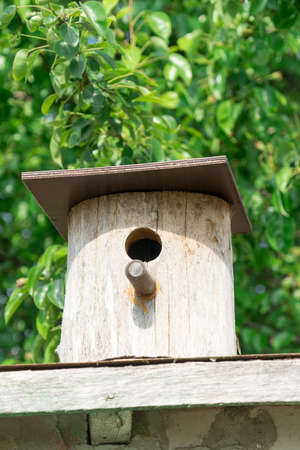 birdhouse. Wooden house for birds. Birdhouse on a background of green foliage. birdhouse. Wooden house for birds. Birdhouse on a background of green foliage. Banco de Imagens - 125356086