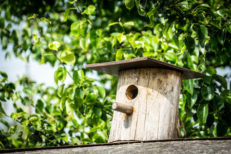 birdhouse. Wooden house for birds. Birdhouse on a background of green foliage. birdhouse. Wooden house for birds. Birdhouse on a background of green foliage.