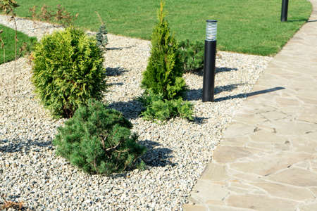 landscaping in a private yard. Natural stone sidewalk and green lawn.