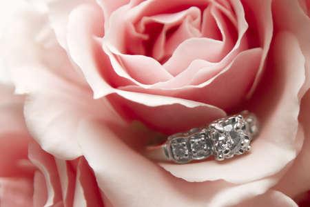 anillo de boda: Anillo de diamantes ubicado dentro de una flor rosa y roja Foto de archivo