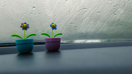 Solar sunflower is placed on the front of the car on a rainy day. Doll in front of the car with atmosphere when it rains and background raindrops on car glass.