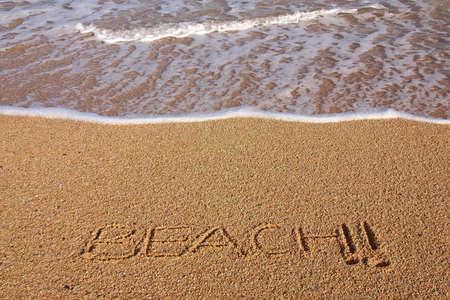 beach in los cabos, mexico