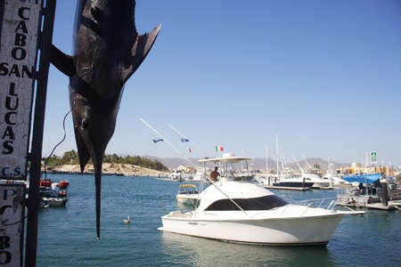 sur: fishing in Los Cabos, Baja California Sur, Mexico