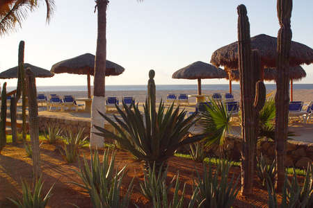 lucas: chairs at the beach of a hotel in Los Cabos, Baja California, Mexico, Latin America Stock Photo