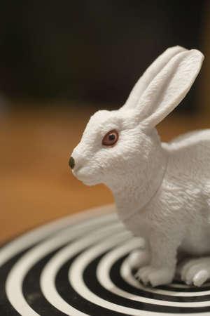 crazy rabbit toy Stock Photo - 3691182