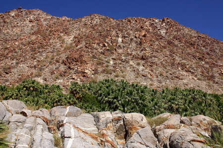 nonexistent: landscape in the desert of Baja California Norte in Mexico