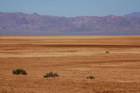 tourisms: landscape in the desert of Baja California Norte in Mexico