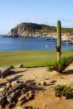 golf course in Los Cabos in Mexico Imagens