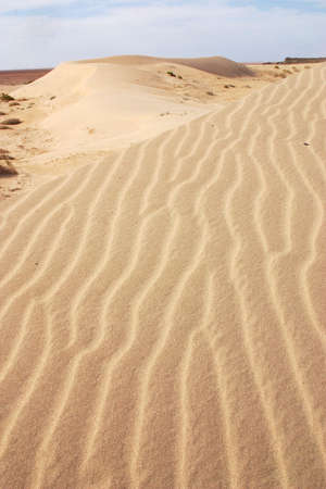 desirability: dunes in Baja California, north of Mexico