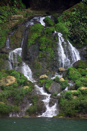 mountainside: nature in Chiapas, south of Mexico