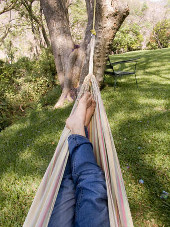 chillout in a great hammock in the middle of the nature photo