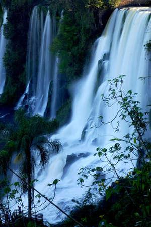 southamerica: Iguazu Falls, at the border of Argentine and Brasil, Southamerica.