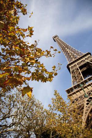 ile de france: Champ de Mars, park around of Eiffel Tower, Paris, France, Europe