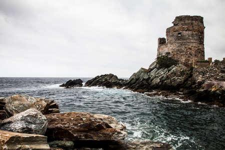 domestics: Village of Erbalunga, Cap de Corse, Corsica, France