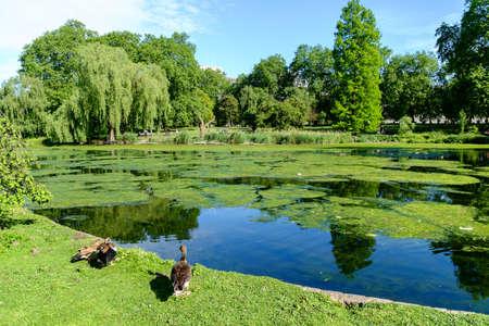 royal park: St James park is the oldest Royal park in Westminster, central London in England
