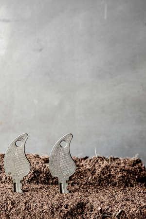 receptivo: Concepto de crecimiento con un poco de tierra y las llaves