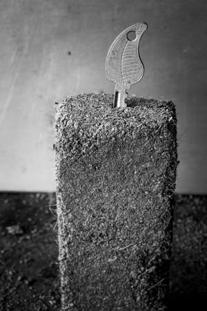 receptive: Growth concept with some soil and keys Stock Photo