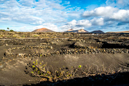 canary: Volcanoe landscape in Lanzarote, Canary Islands, Spain Stock Photo
