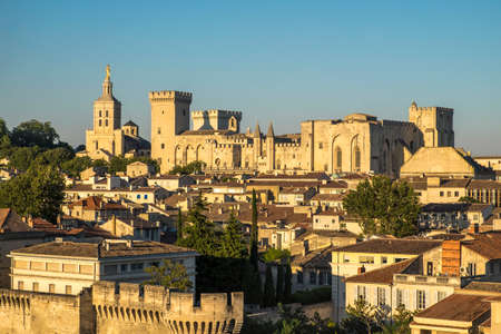 metropolis image: Aerial view of Palais des Papes, UNESCO World Heritage Site, and church, Avignon, Vaucluse, Provence, France, Europe Stock Photo