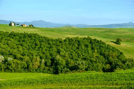 pienza: Countryside landscape around Pienza Tuscany Italy