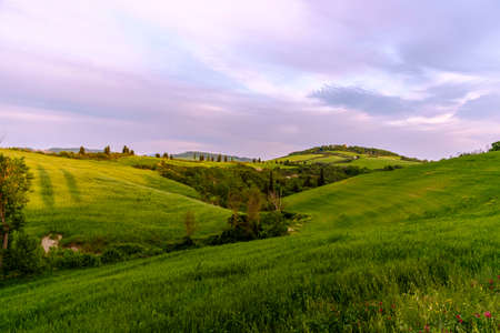 san quirico d'orcia: Val dOrcia in Italys Tuscany province Europe