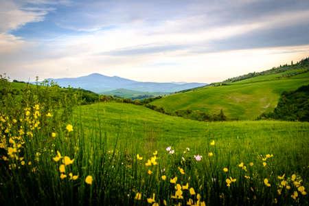 Scenery near to Pienza, Tuscany. The area is part of the Val dOrcia Italy Europe Stock Photo