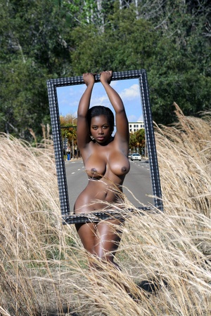 A lovely nude, black woman standing in tall grass holding a large picture frame appears to occupy two dimensions at the same time