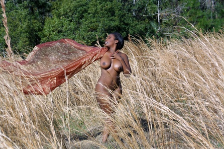 A lovely, sexy, nude, black woman standing in tall grass, holding sheer fabric blowing in the breeze behind her Stock Photo - 12670435