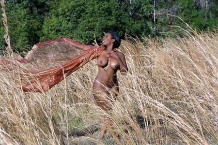 femme black nue: Une belle, sexy, nue, femme noire, debout dans l'herbe haute, tenant tissu transparent dans la brise derri�re elle