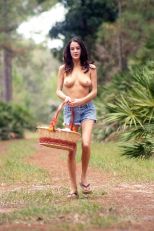 A lovely young topless brunette carries a picnic basket on a tranquil forest trail. Stock Photo