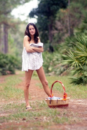 A lovely young brunette, covered only by her shirt, carries a picnic basket on a tranquil forest trail. Standard-Bild