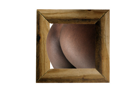 Perfect petite female buttocks emerge from a rustic wood frame, isolated on a white background with generous copyspace.