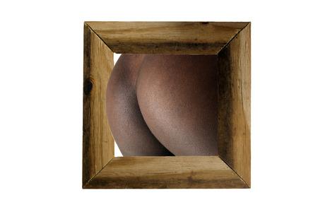 Petite perfekte weibliche Gesäß ergeben sich aus einem rustikalen Holzrahmen, isoliert auf einem weißen Hintergrund mit großzügigen copyspace. Standard-Bild - 31476813
