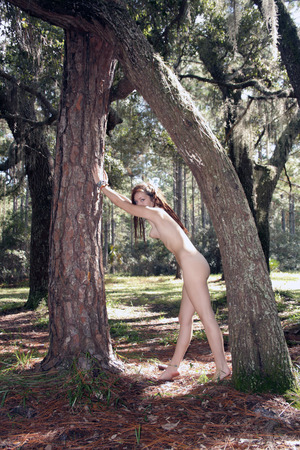 A lovely young woman mimics the shape of trees in a forest with her naked body.