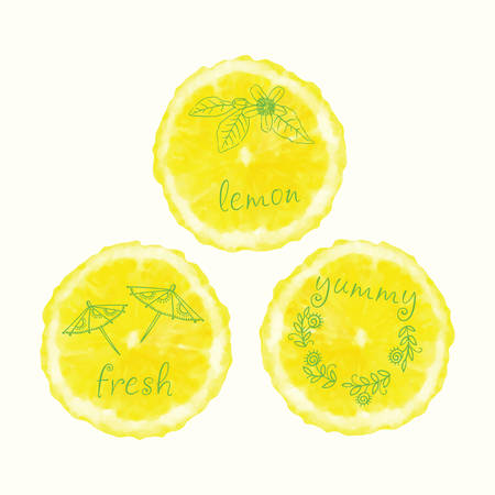 orange slices: watercolor orange slices and  doodle elements. painted circles collection.