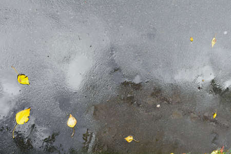 Autumn wet asphalt pavement with puddles, raindrops and yellow leaves after heavy rain 免版税图像