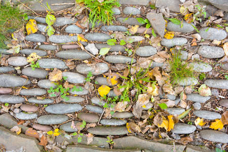 Huge large stones and pebbles as decorative bent path or flower bed with yellow fallen autumn leaves on the ground